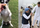 Pidi to be Prime Ministerial Candidate for Congress in 2019 Loksabha elections